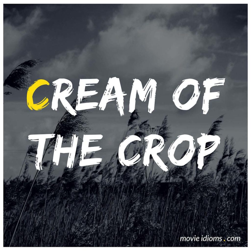 Cream Of The Crop Idiom