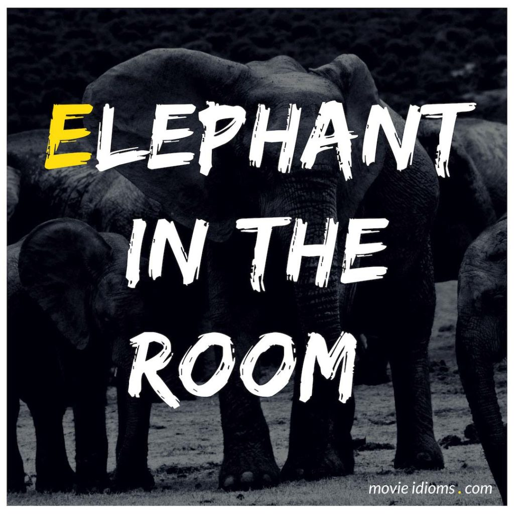 Elephant In The Room Idiom
