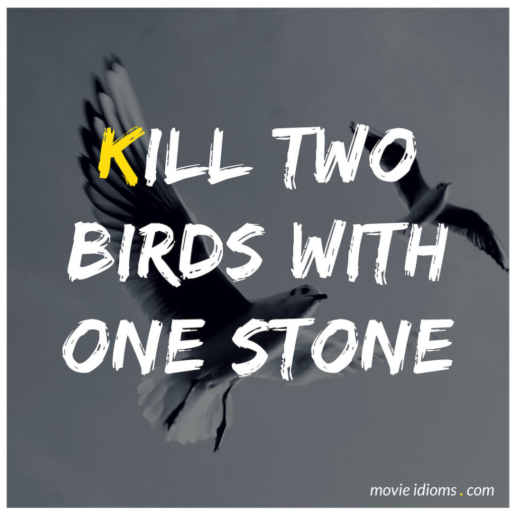 Kill Two Birds With One Stone Idiom