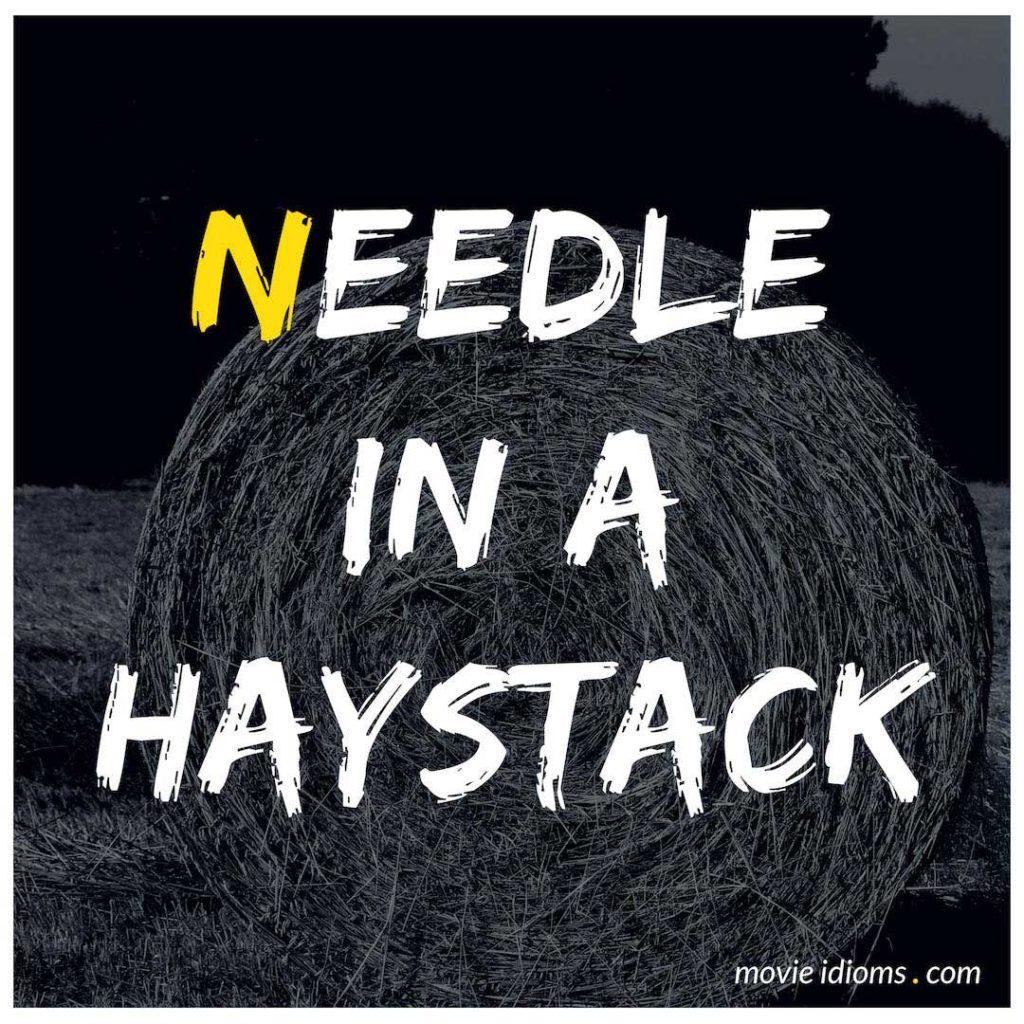 Needle In A Haystack Idiom