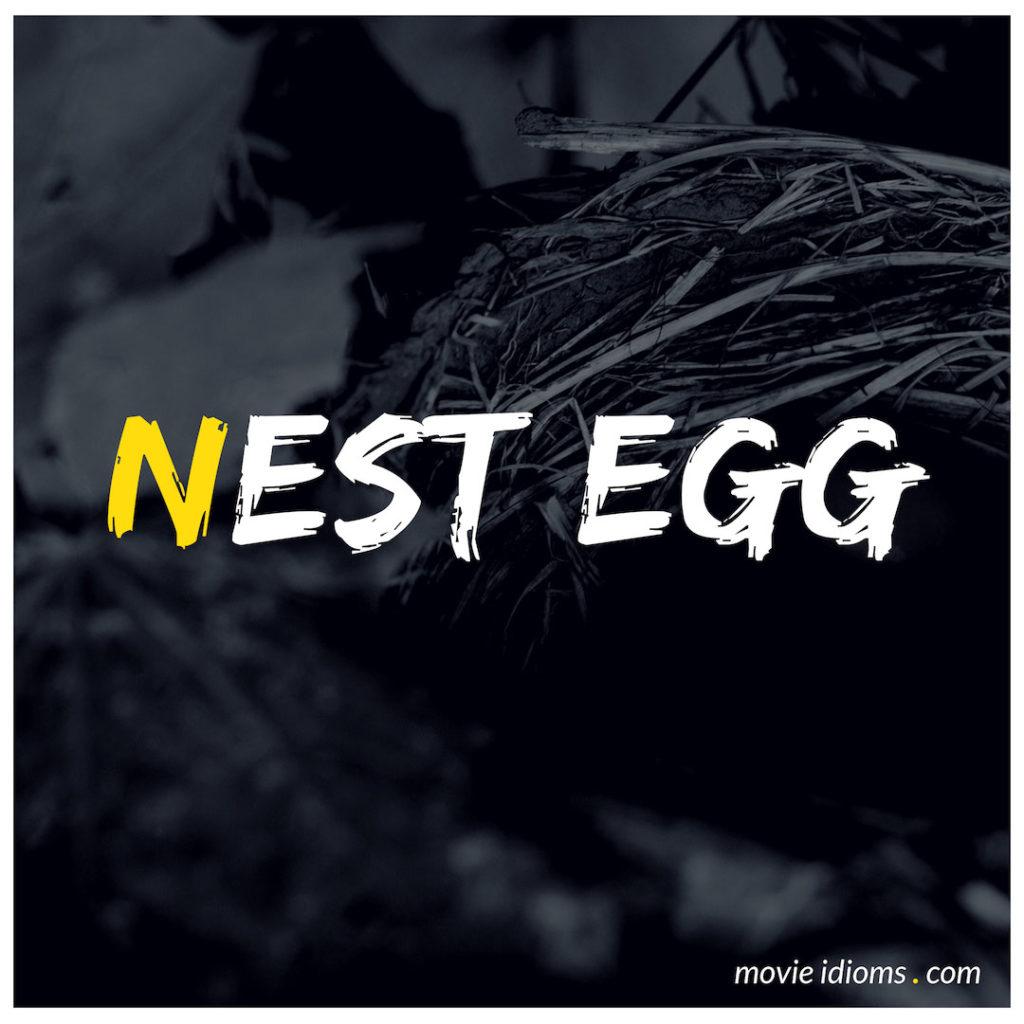 Nest Egg Idiom