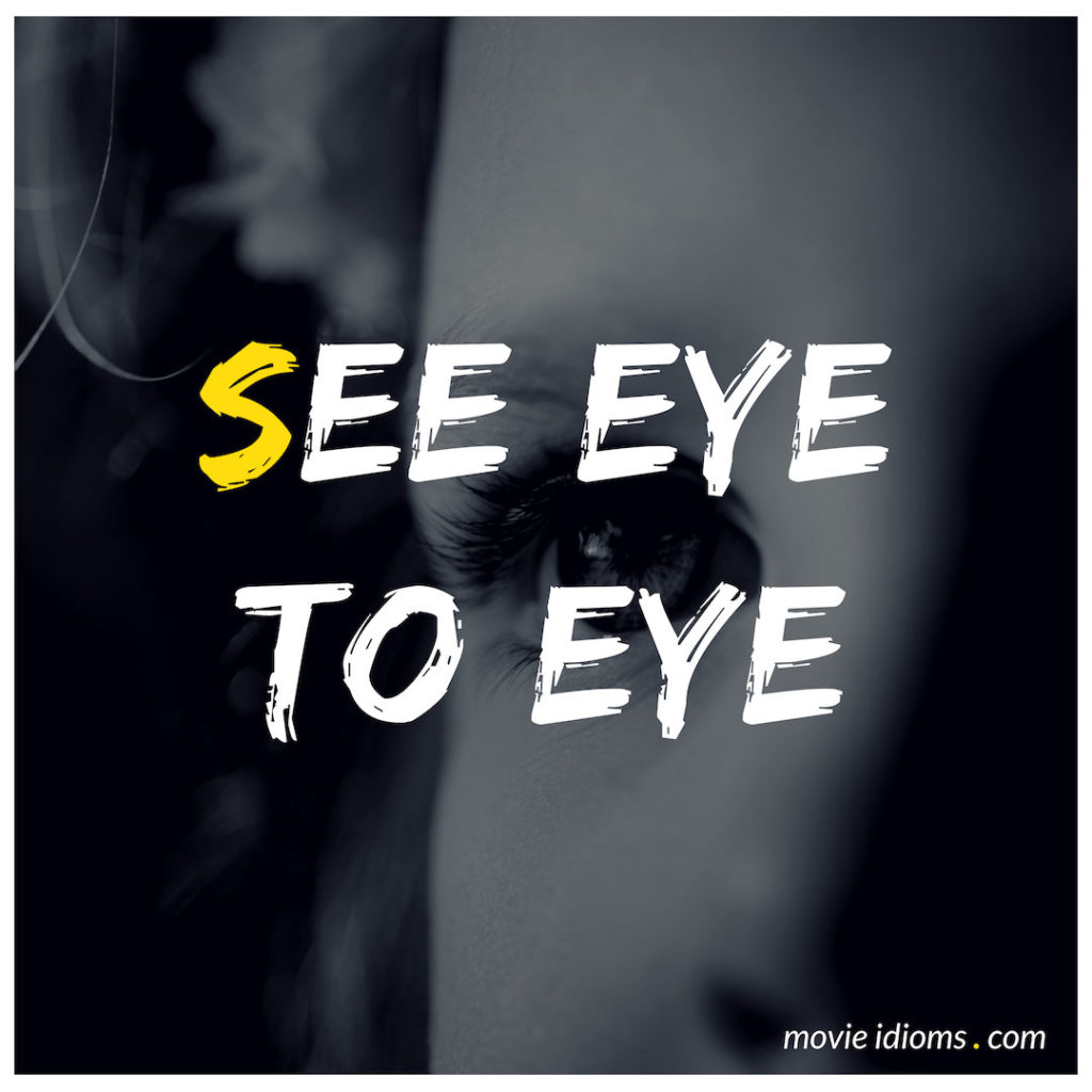See Eye To Eye Idiom