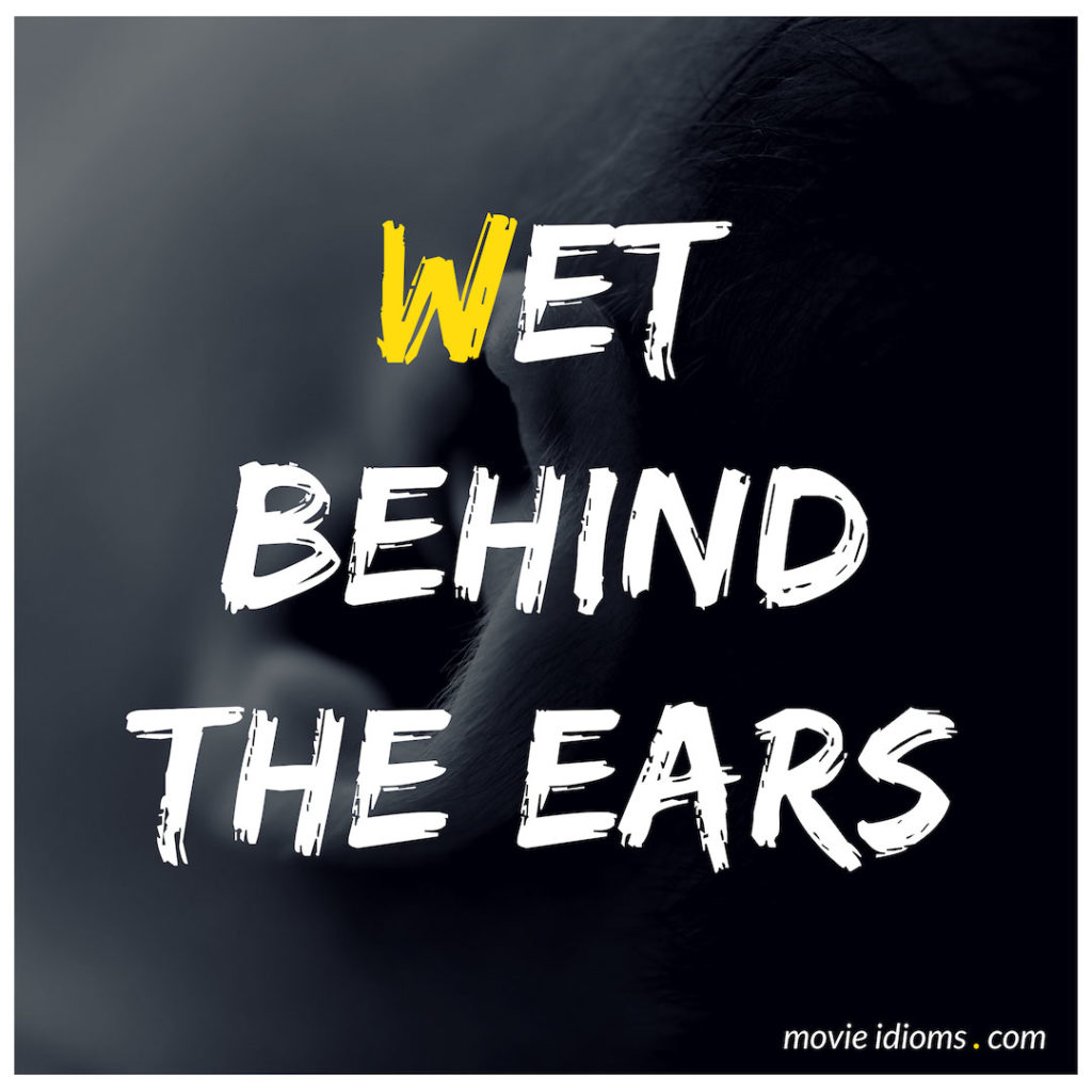 We Behind The Ears Idiom