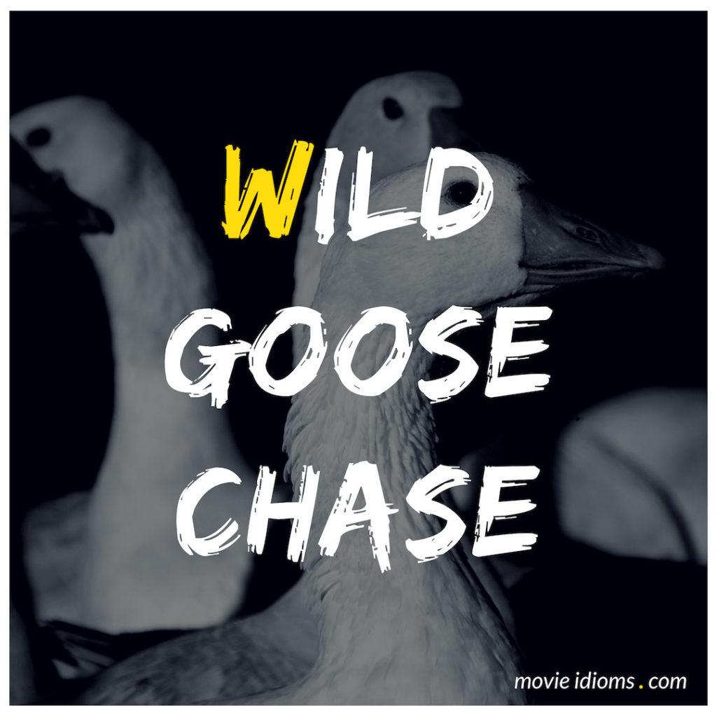 Wild Goose Chase Idiom