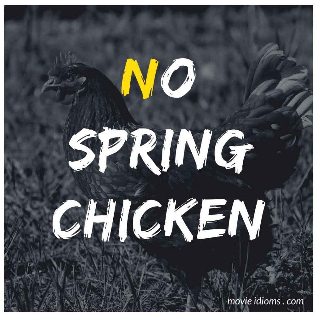 No Spring Chicken Idiom