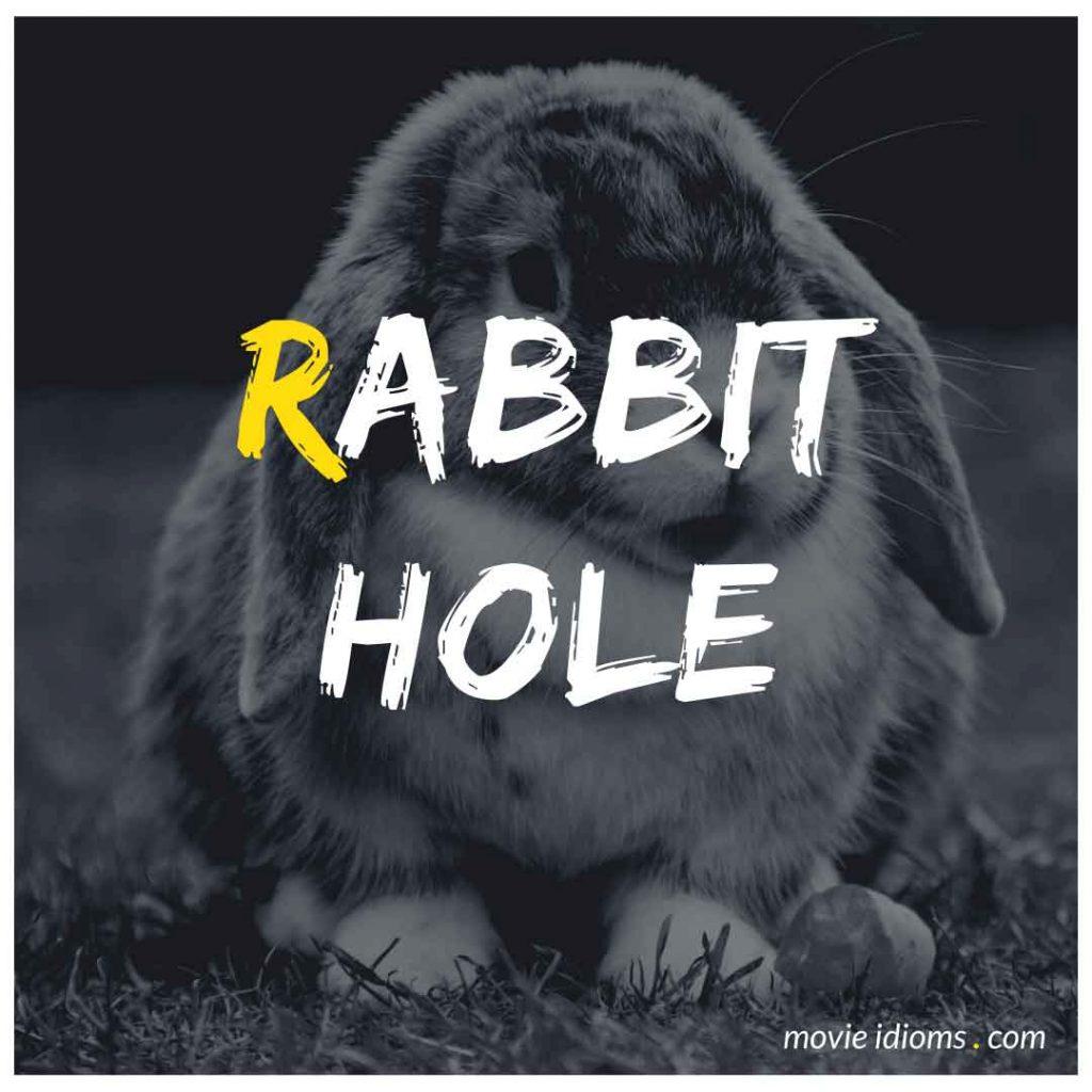 Rabbit Hole Idiom
